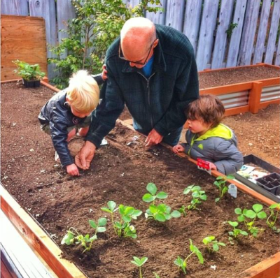 gardening with grampy