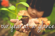 Our year at-a-glance